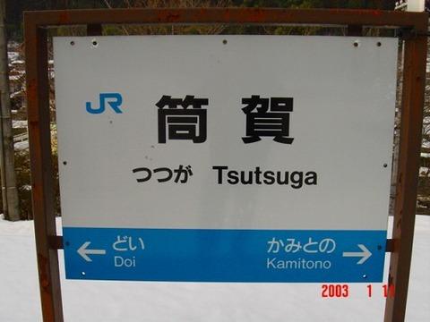 tsutsuga