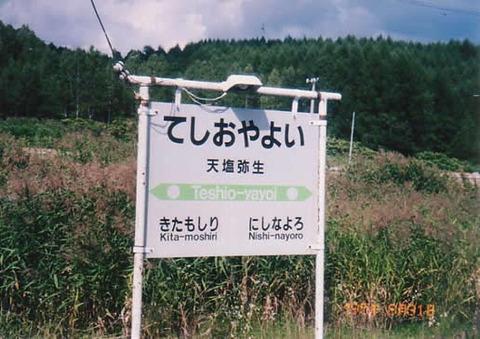 teshioyayoi