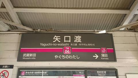 yaguchinowatashi