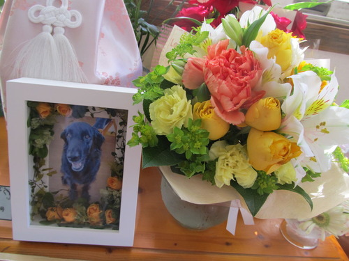 2014_3_22にコンサ仲間からお花