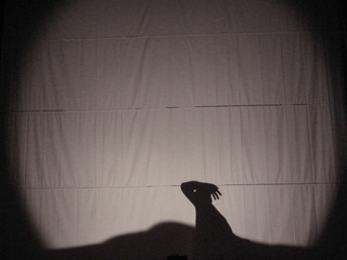 "GB−Shadow picture""Silurian period""・09Iguana"