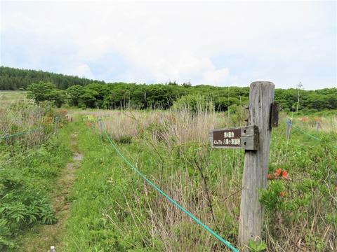 �第4園地へ向かう自然研究路