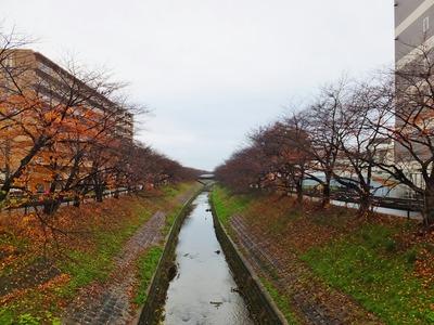 14・近鉄・新大宮駅国道369号線から佐保川の下流を見る
