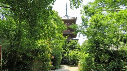 4・本堂前から五重塔