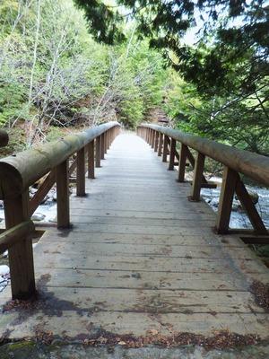 突き当りの下り坂を下り、この橋を渡ってきました