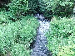 横を流れる滝之湯川