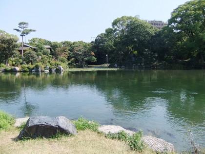 枳殻邸の池