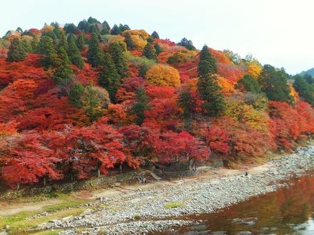 十二単を色鮮やかに纏う飯盛山