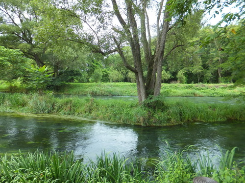 大王わさび園を流れる万水川と蓼川