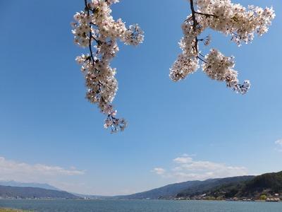 春爛漫の諏訪湖