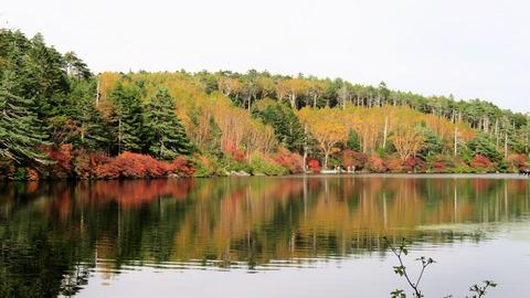 8・白駒池の紅葉
