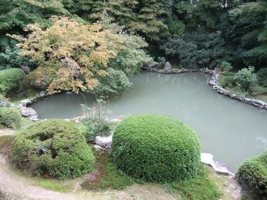 本堂廊下より池を望む