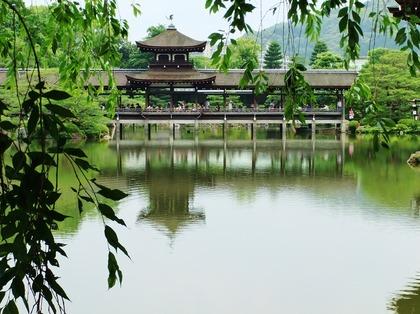 東神苑、橋殿を望む