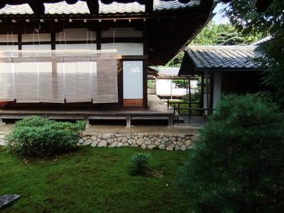洛巽の苔寺と呼ばれる大杉苔