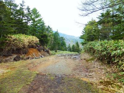 三本滝ルートの入口