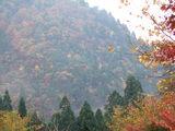 美山荘から花脊の山を