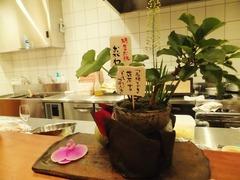 """京都の蕎麦処""""おがわ""""からもお花が・・・"""