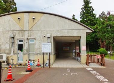 3・トキ資料展示館