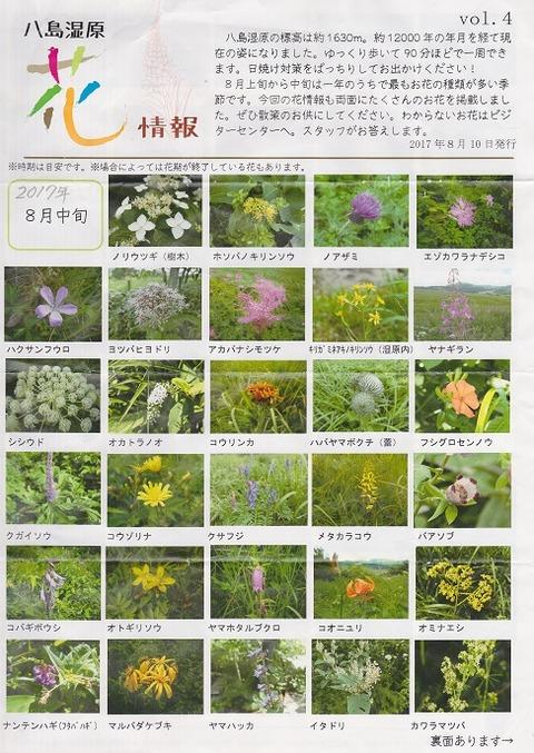 8 八島湿原花情報・表 - コピー (2)