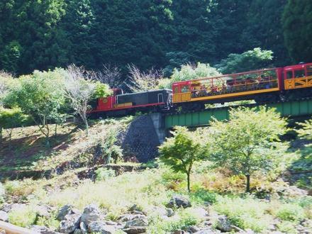 トロオコ列車、ザ・リッチ号が見えます