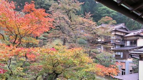 1 百合の間から向瀧旅館と中庭の紅葉