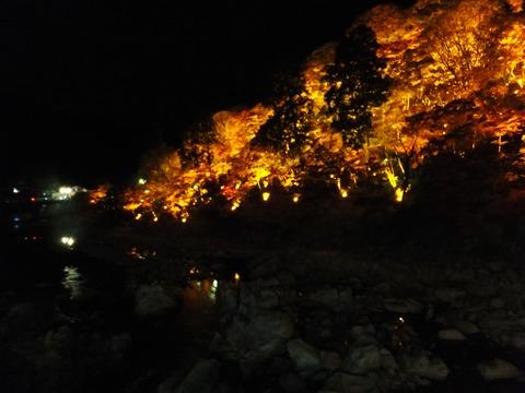 巴川沿いにライトアップされた紅葉