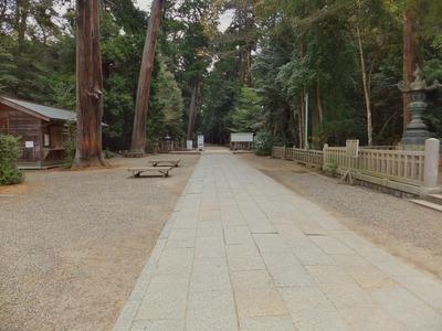 拝殿前から奥宮への参道を見る