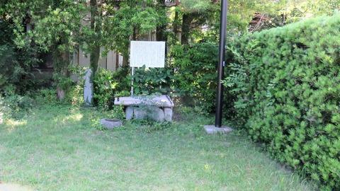 12・曲水の庭と書院の生垣に沿った奥にお辻の井戸