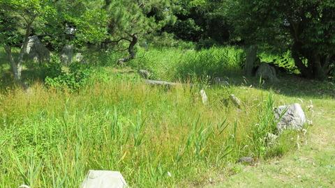 11・草で覆われた曲水式庭園