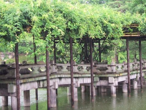 12・仙洞御所の八橋