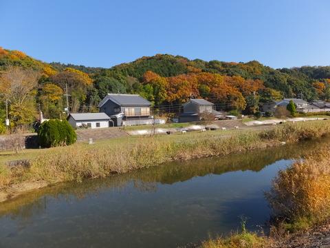 海柘榴市歴史公園と三輪山