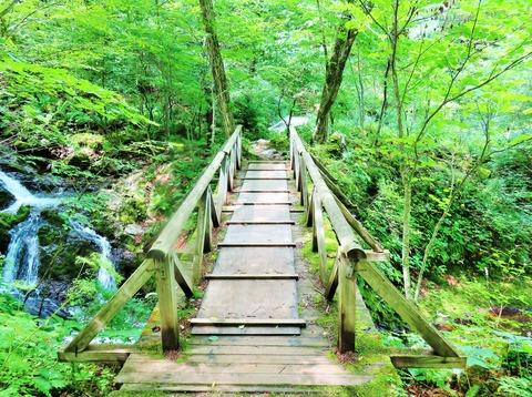 2・八千穂高原自然園内・もみじ橋