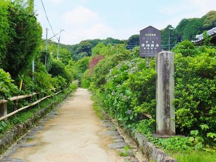 2・浄瑠璃寺参道