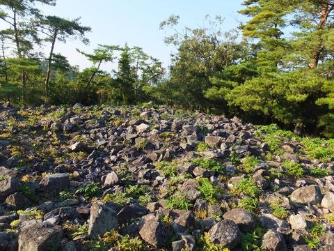 46・真ん中の円墳頭頂部の積石