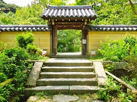 5・浄瑠璃寺山門