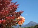紅葉と山と熱気球