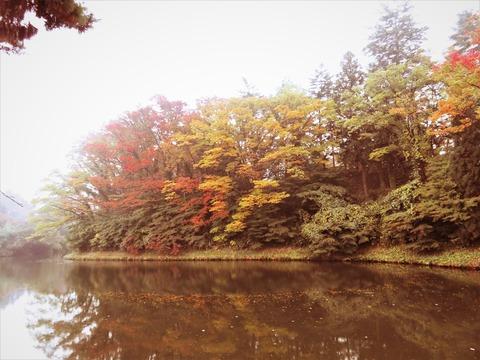 1 鶴ヶ城お堀の紅葉