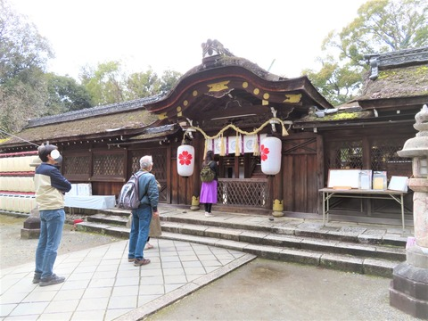 �桜の神紋の提灯をつるす本殿