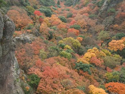 渓谷を埋め尽くす紅葉