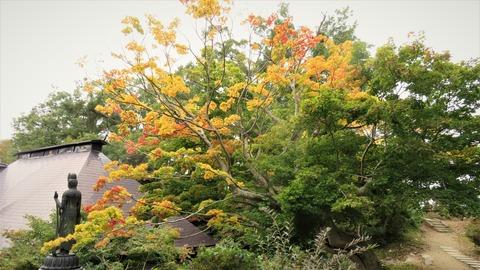 31 天童市若松寺の観音さまと黄葉