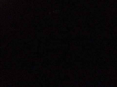 2011_06142011年6月14日京都0652