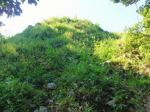 15・猫塚・雑草に覆われた中円墳