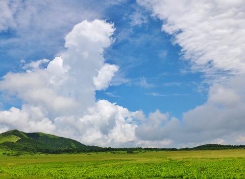 15・盛夏の八島湿原