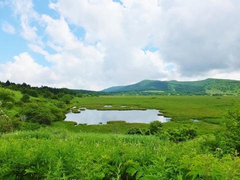 9・八島湿原一望・八島ヶ池