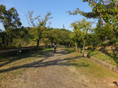 27・小塚古墳からは自然道をゆく