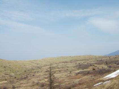 コロボックル雲