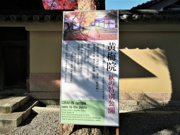 大徳寺黄梅院 秋の特別公開
