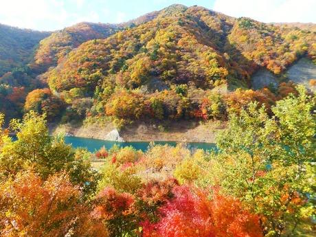 奥四万湖と全山紅葉の息を呑むコントラスト