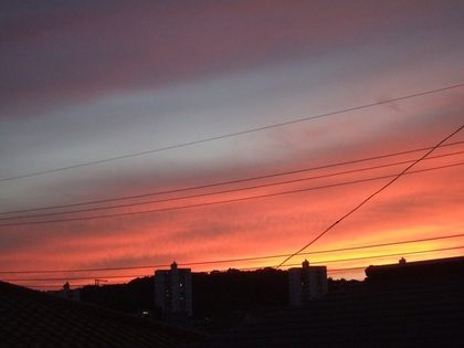 北の空が赤く一本の筋雲が