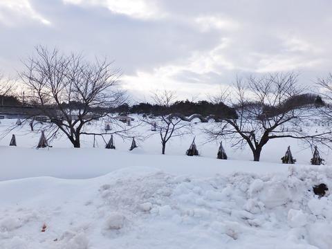 9・平安の風わたる公園